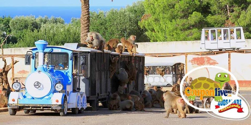 FASANO. 1 Notte in Mezza pensione con ingresso allo Zoo a soli Euro 158,00 a coppia, da Park Hotel  Sant'Elia.