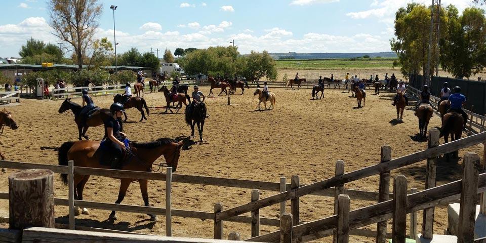 5  Lezioni di Equitazione a Taranto per  bambini dai 4 ai  7 anni a soli Euro 34,00 a  persona, da Centro Ippico  Tarantino.